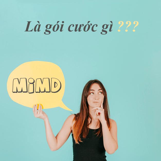 MIMD Viettel là gói cước gì?